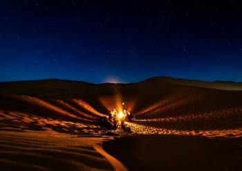 This Is How You Can Enjoy the Desert Safari in Dubai (And Safari Companies You Can Book)