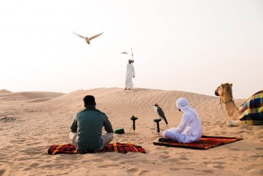 5 Things a First-Timer Must Do in Dubai